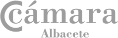 Cámara de Albacete